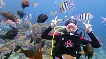 【台東綠島】玻璃海 x 珊瑚礁,潛水初體驗!