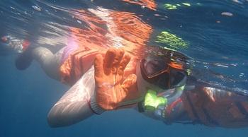 秘密海洋浮潛 - 來去東北角深入海洋奧秘!