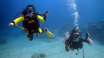 海底總動員齊共游!墾丁輕鬆岸潛趣